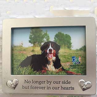 Forever In Our Hearts Pet Picture Frame
