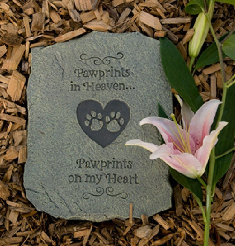 pet paw print in heart